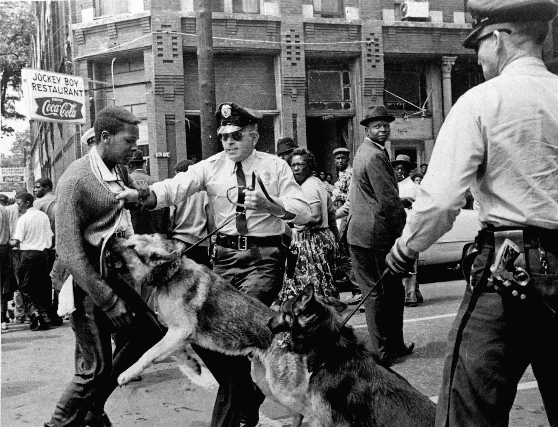 Several police sic German shepherds on a high-school-age black man