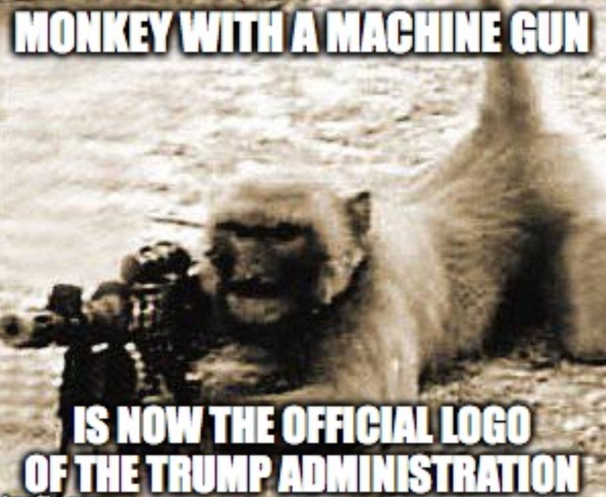 The meme shows a monkey apparently operating  a machine gun, and says: Monkey with a machine gun is now the official logo of the Trump administration