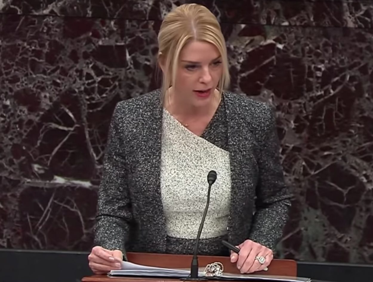 Pam Bondi in a dark gray and ivory ensemble that looks like it's studded in gravel, up against a light black, marbled background