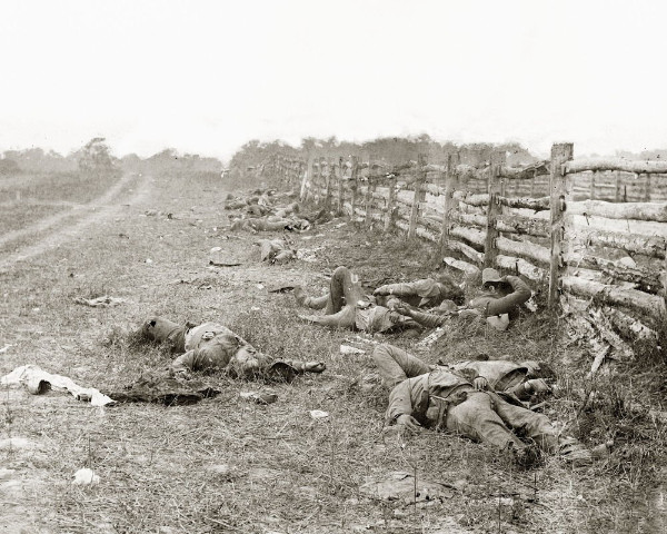 About 10 Confederate soldiers' bodies are scattered along a fenceline on the Antietam battlefield